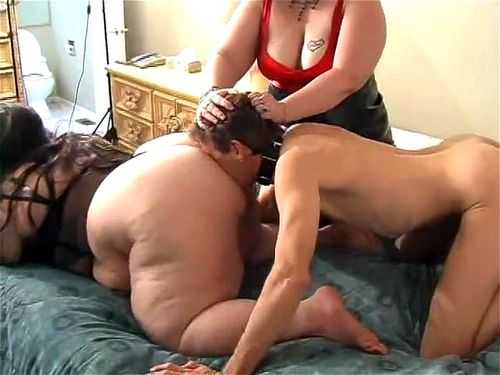 Spankbang Porn